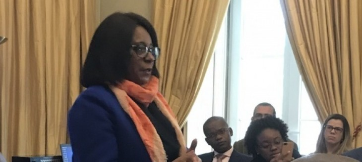 Angola: Ministra do Ensino Superior Contestada