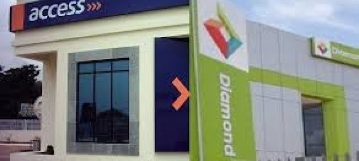 Mozambique: Nigerian Access Bank Partners With Dino Foi